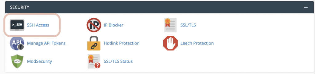cpanel with sSH access icon circled
